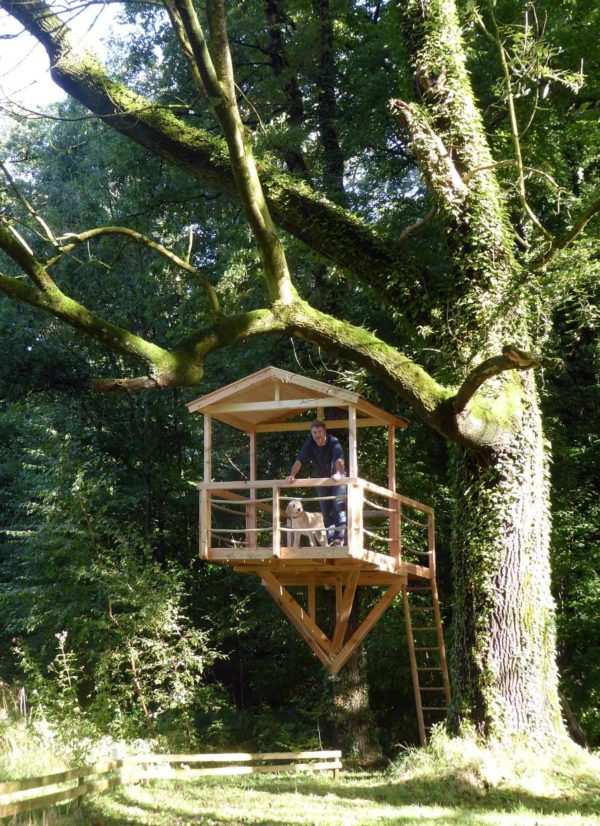 treehouse building law children playhouse