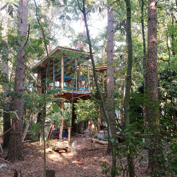 Baumhaus selber bauen im Wald