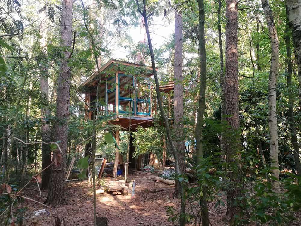 schönes Baumhaus mit großen Fensterflächen im Wald