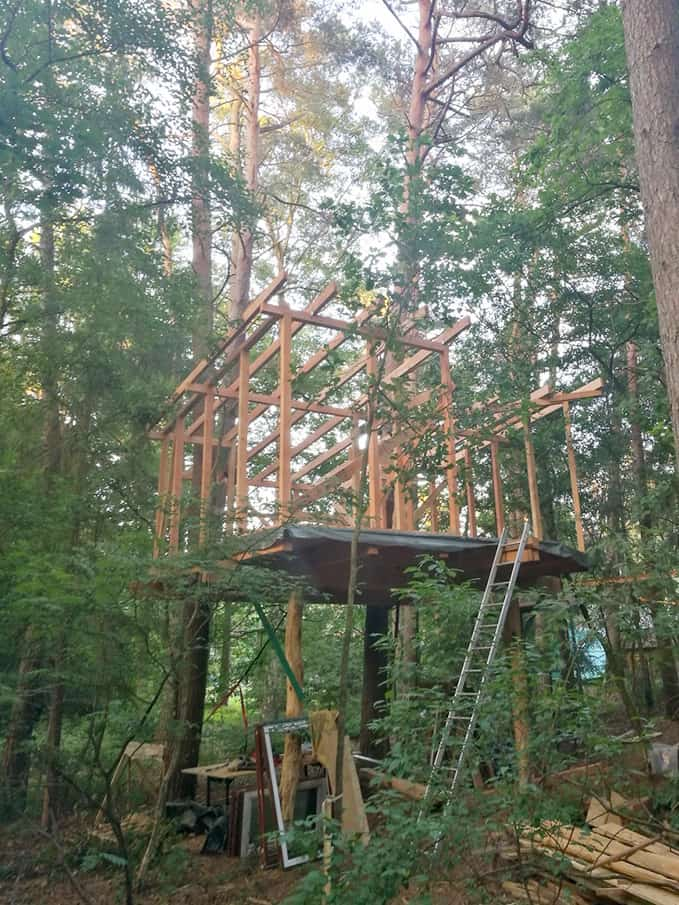 diy treehouse raw construction in the woods