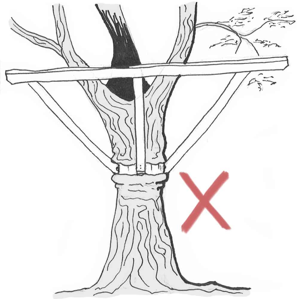 Baumhaus-befestigung-schädlich---manschette-stahlgurt-schnüren-baum-ein