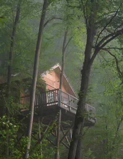 baumbaron baumhaus bauen treehouse building international (13)