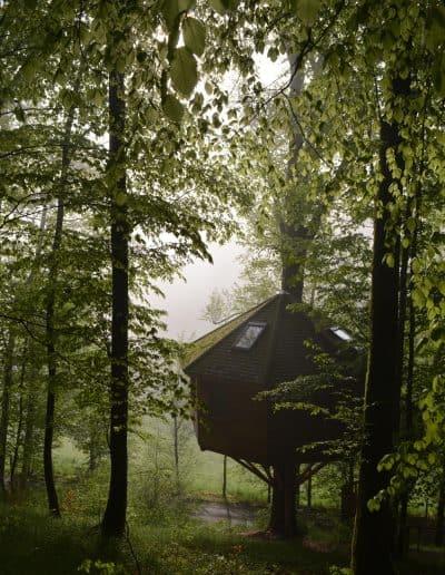 baumbaron baumhaus bauen treehouse building international (14)
