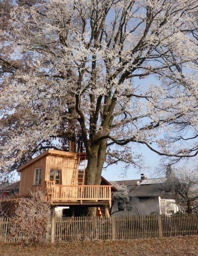 baumbaron baumhaus bauen treehouse building international (30)