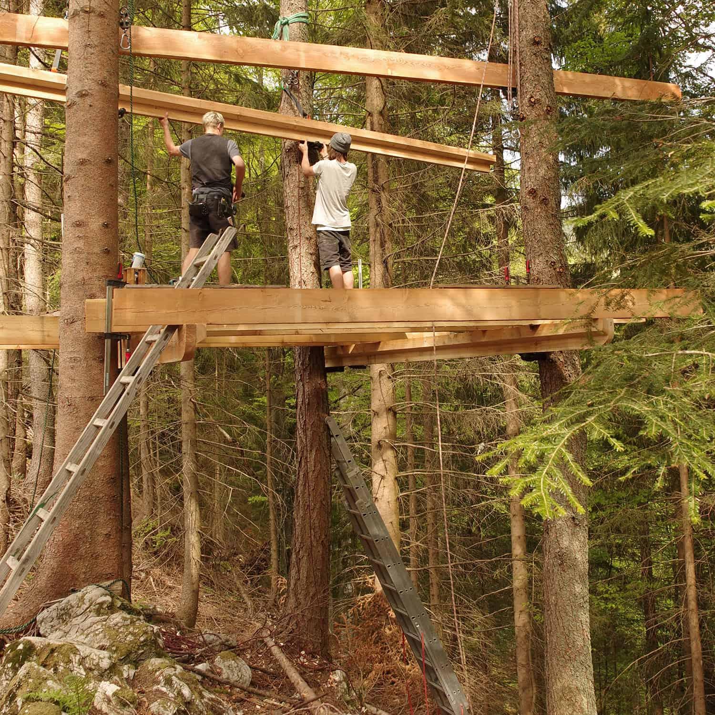 casa albero constrizione bosco