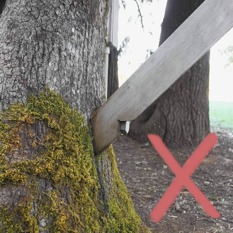 Probleme entstehen bei durchnässten Baumhaus Fixierungen
