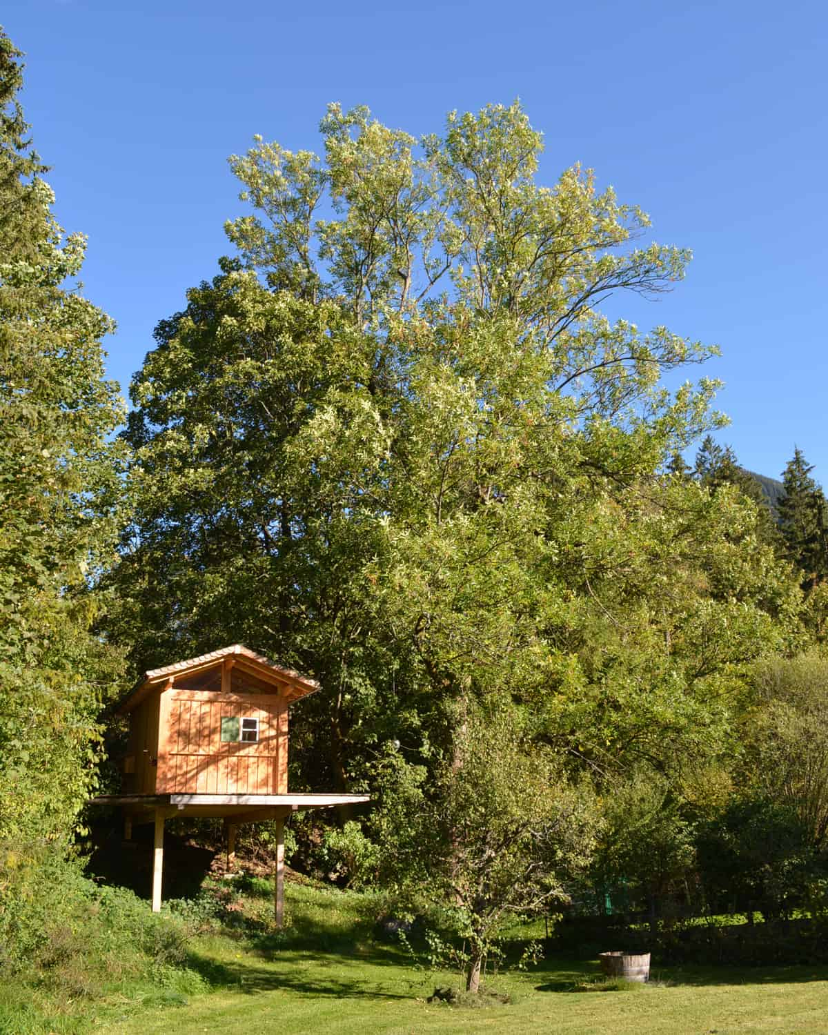 How to build a backyard treehouse my little refuge in the nature