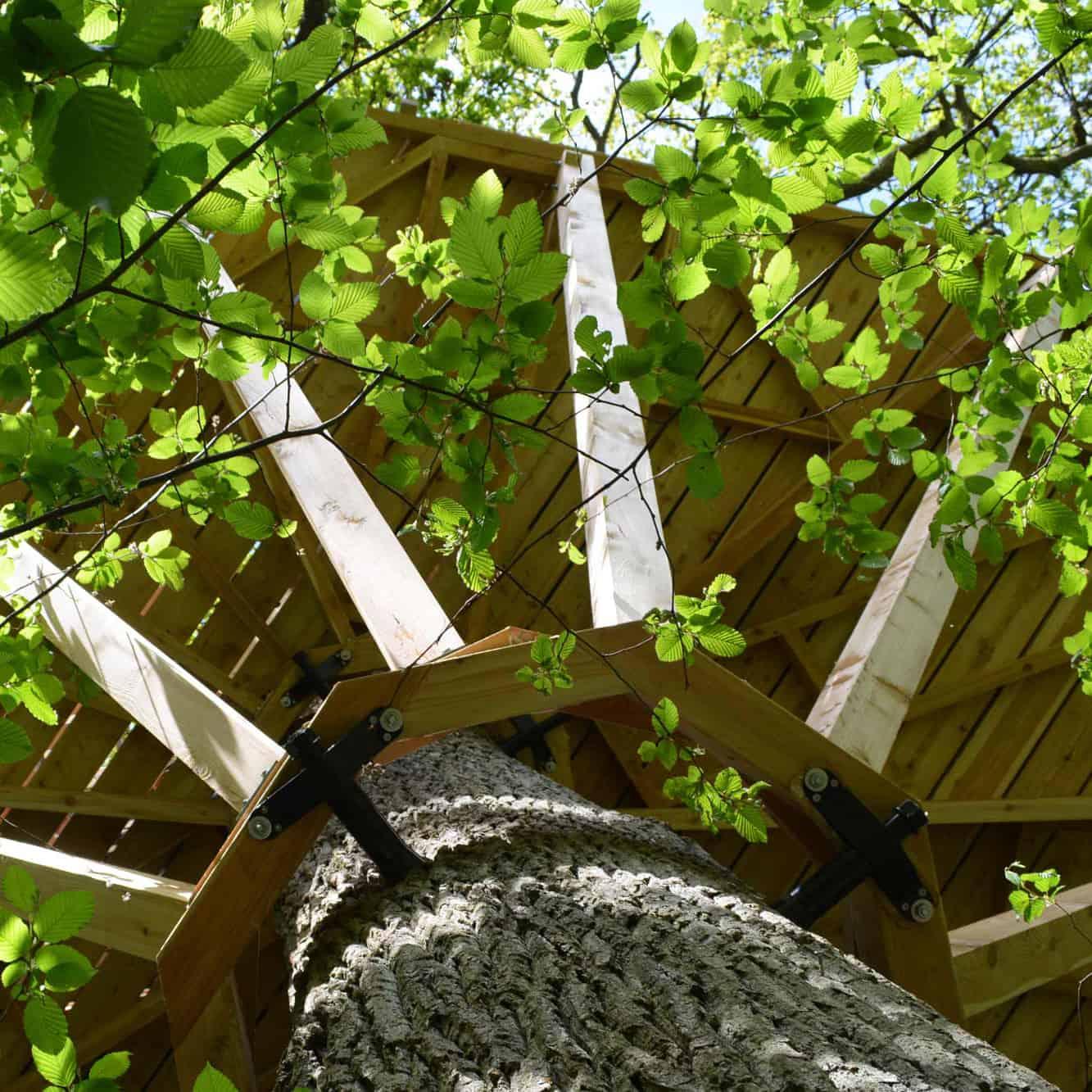 heavy-treehouse-platform-circle-construction-using-8-screws