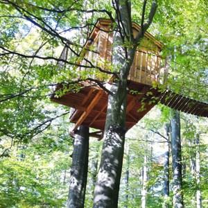 Wie groß kann mein Baumhaus werden Gewicht Größe Bau Dimensionen treehouse shop