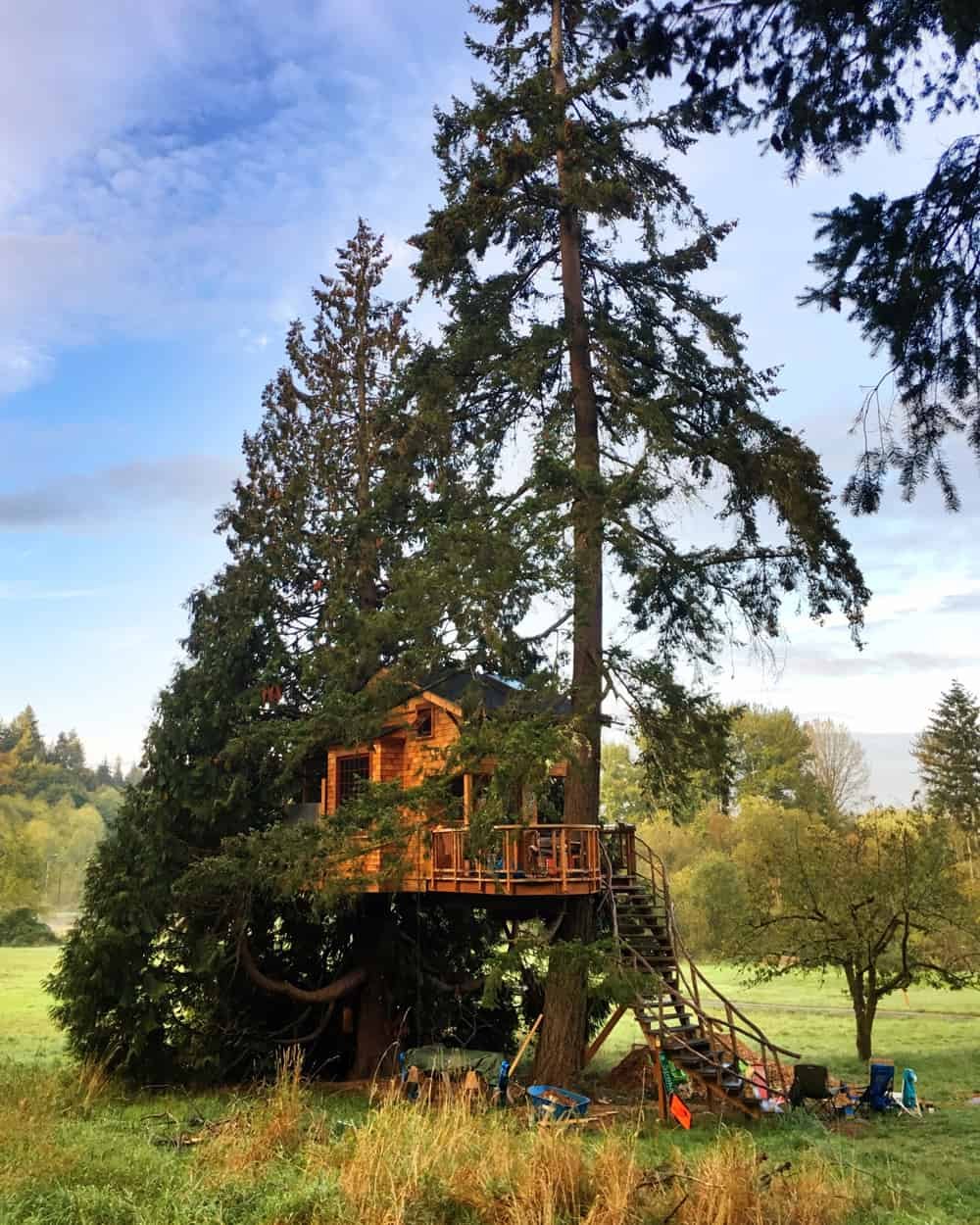 treehouse living a secret home hidden in a beautiful setting