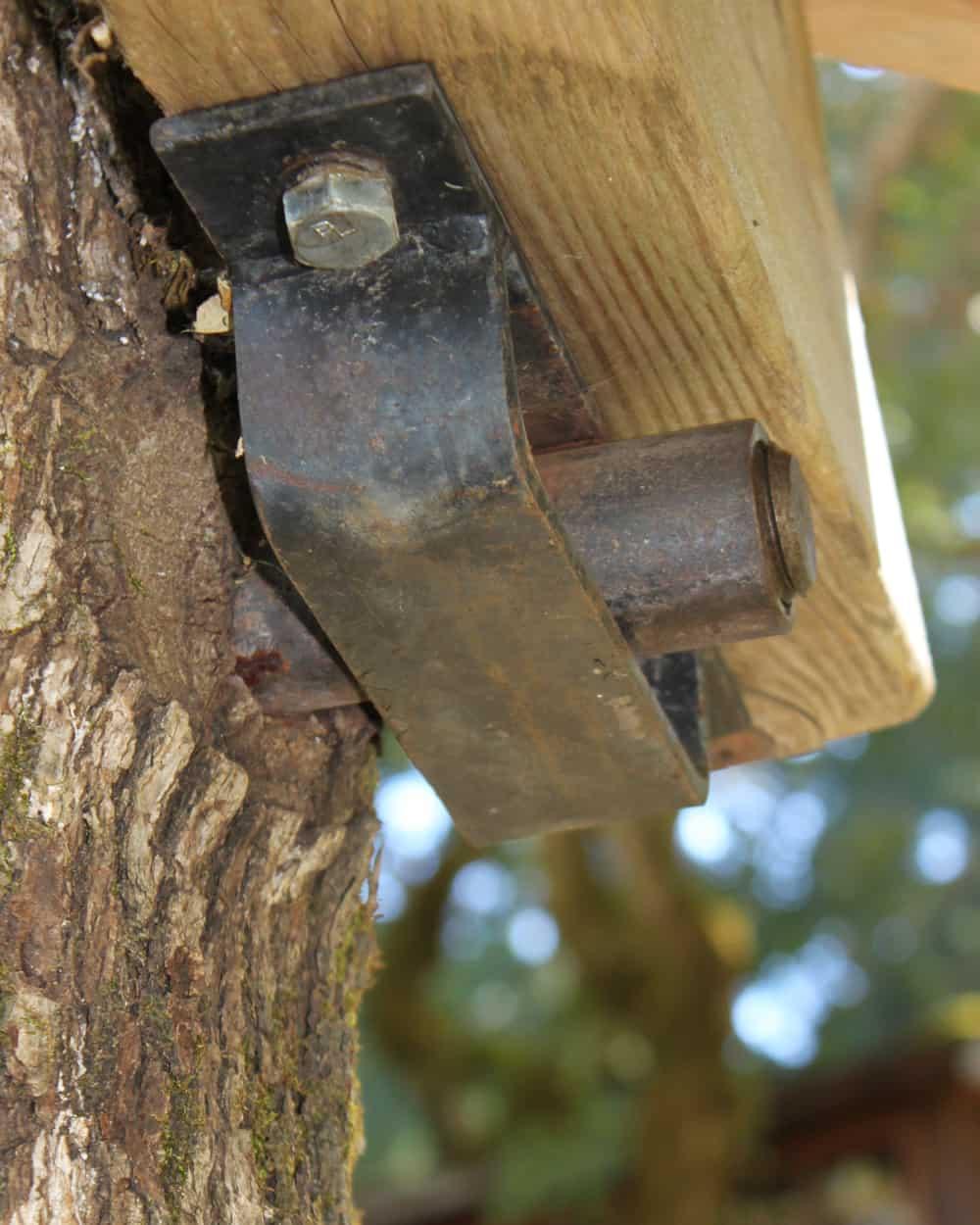 Baumhaus Schraube Bolzen vom Baum überwallt nach 10 Jahren