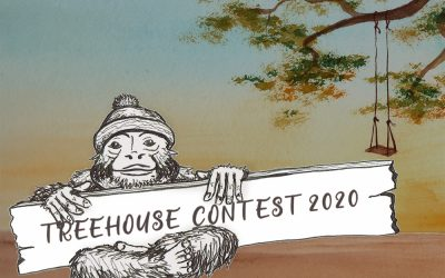 Treehouse Competition 2020 – The Winners Are…