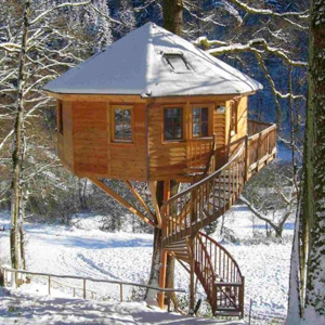 Which tree is best suited for my treehouse construction?
