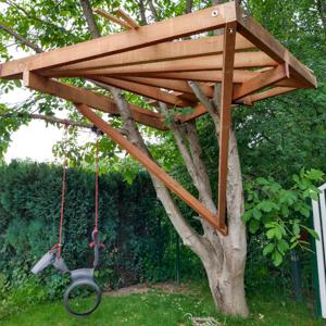 Welcher Baum eignet sich am besten für meinen Bamhaus Bau