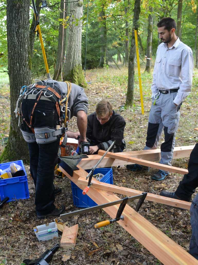 Baumhausbauer bei der Arbeit