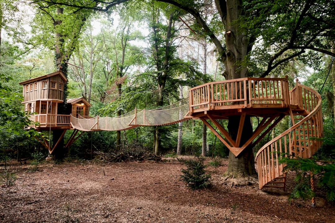 example-beautiful-tree-house-forest-hanging-bridge-spiral-staircase
