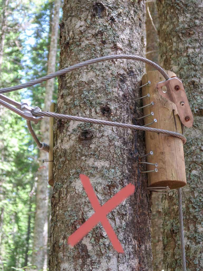 Hochseilgarten Beschädigung von Baum Schrauben Befestigung