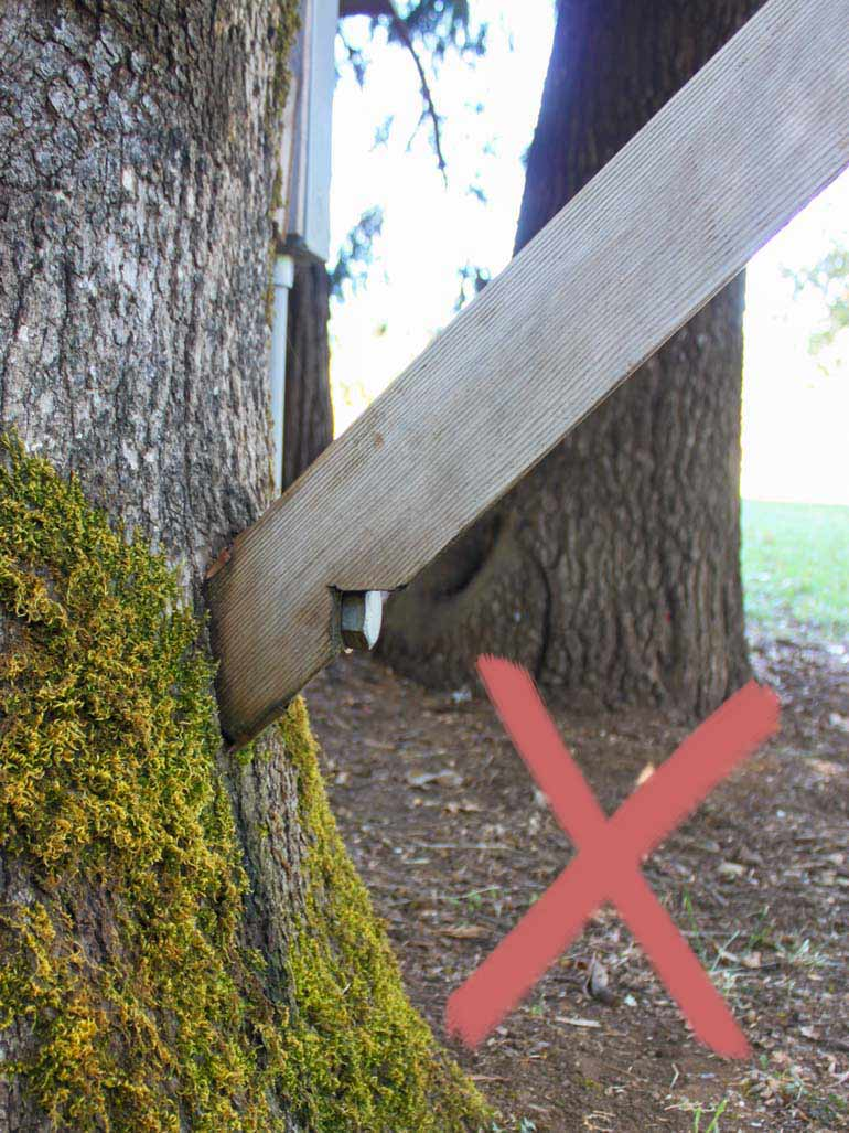 Holzbalken direkt an Baum schrauben problematisch