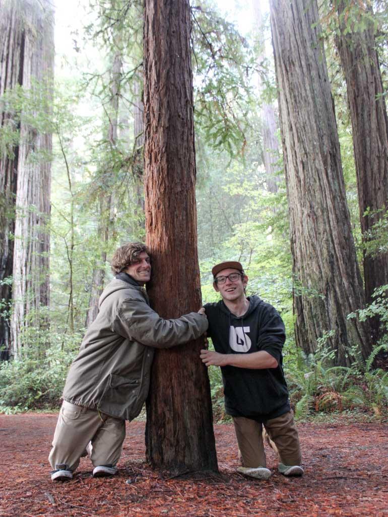 Treehouse builders hug tree like thick