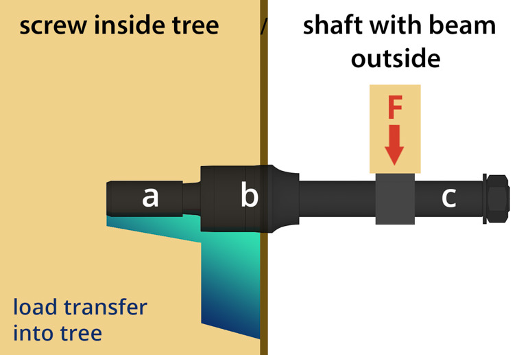 Load-bearing function of German Treehouse Screw GTSin the tree