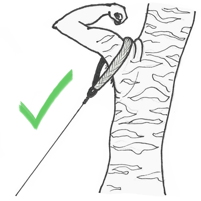 Seil richtig an Baum befestigen mit Baumgurt