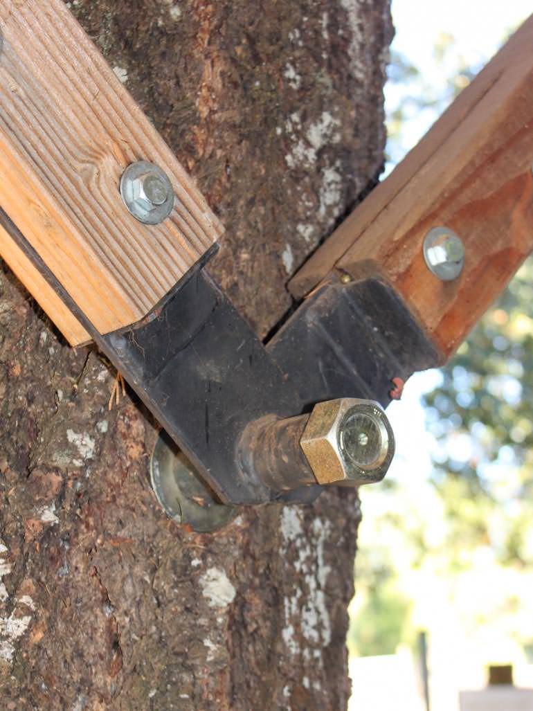 Garnier Schraube im Baum Beispiel altes Baumhaus
