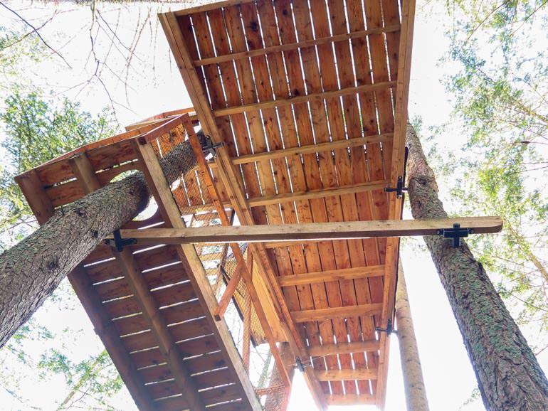 Große Baumplattform mit Schrauben im Baum verankert