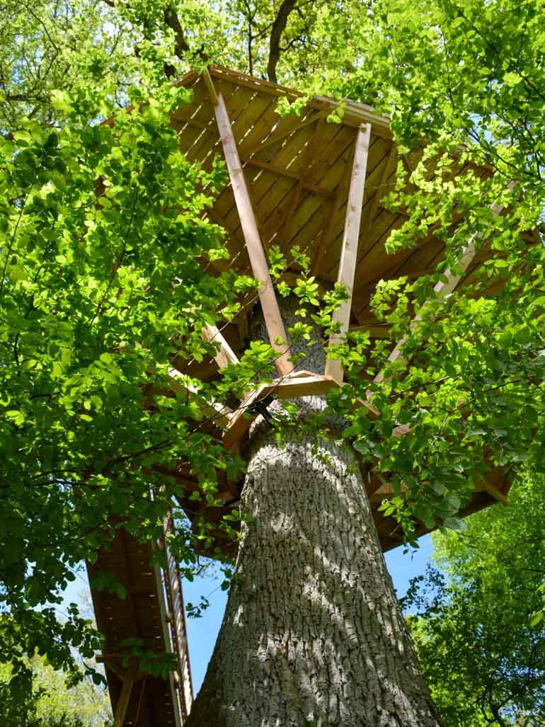 Baumhaus Architektur mit Baumschrauben in Baum