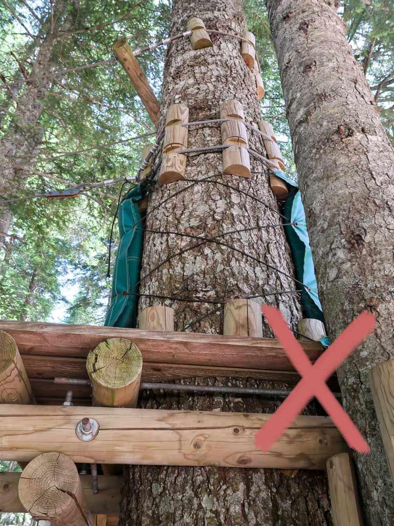 Hochseilgarten Schaden an Baum durch falsche Befestigung