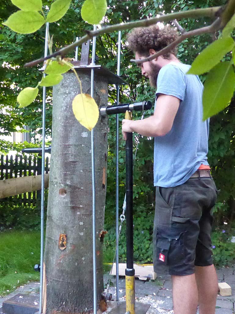 Test und Entwicklung von Baumhausschraube