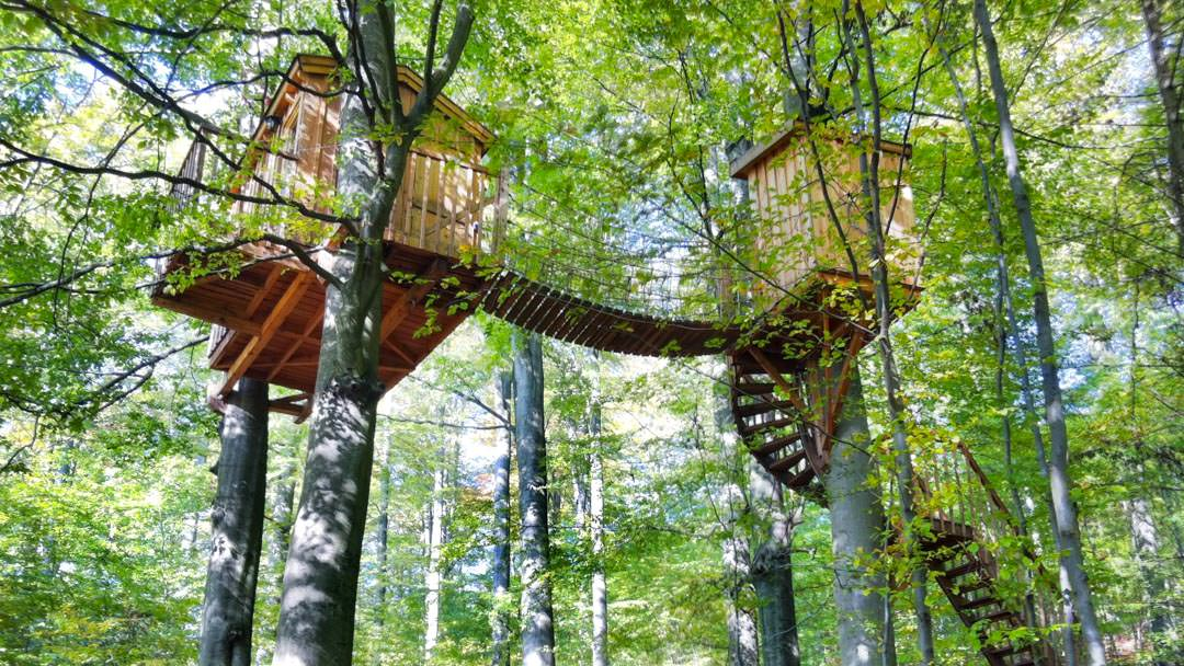 Example tree house in forest