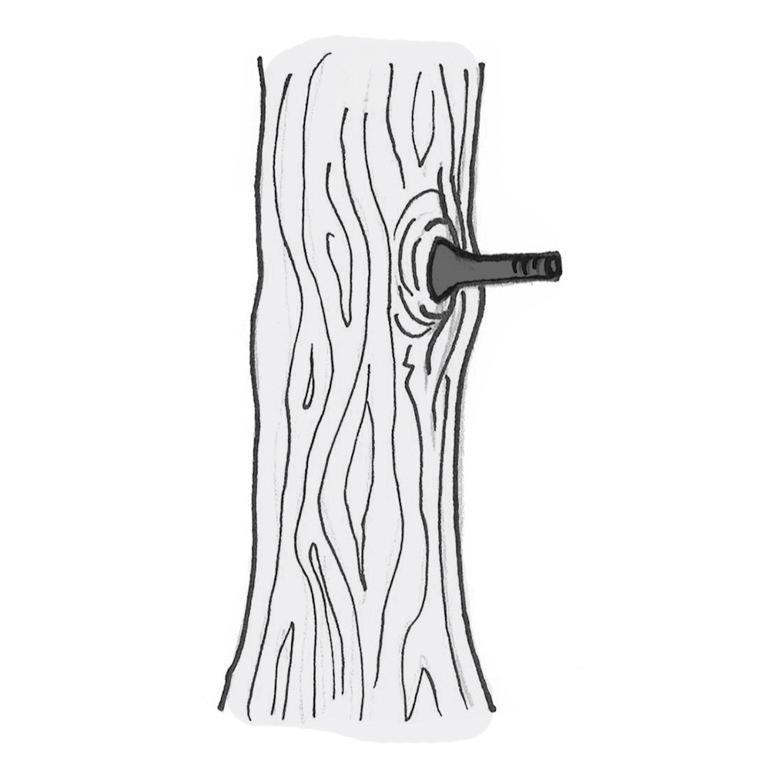 Schema Stahl Schraube wird von Baum umwallt