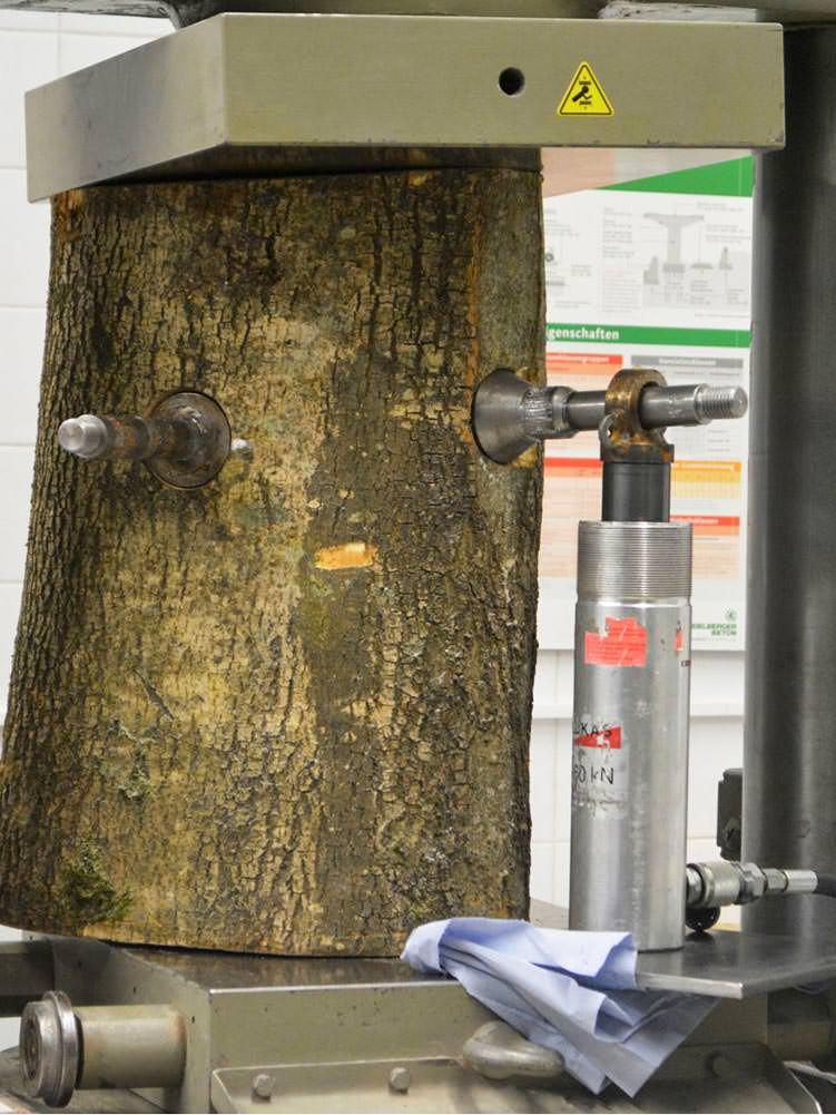Baumschrauben Test und Entwicklung Labor FH München