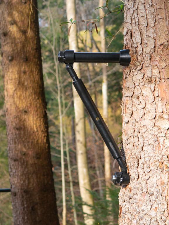 Tree screw reinforced from below with Strut GTS+